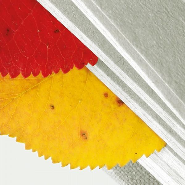 """Plakat und Folder <br> """"Literarischer Herbst"""""""